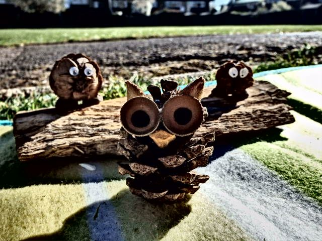 Owl made with a pine cone, acorn cup and beech seed ears