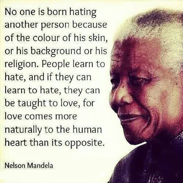 Quotes On Racism Beauteous 538 Best Human Rights Images On Pinterest  America American