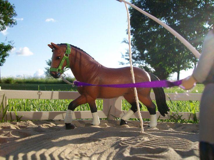 92 Best Schleich Images On Pinterest Breyer Horses