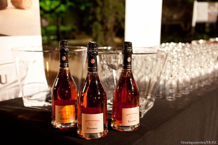 Gran Codorniu Pinot Noir Vintage en la inauguración del área de vinos del Club TresC