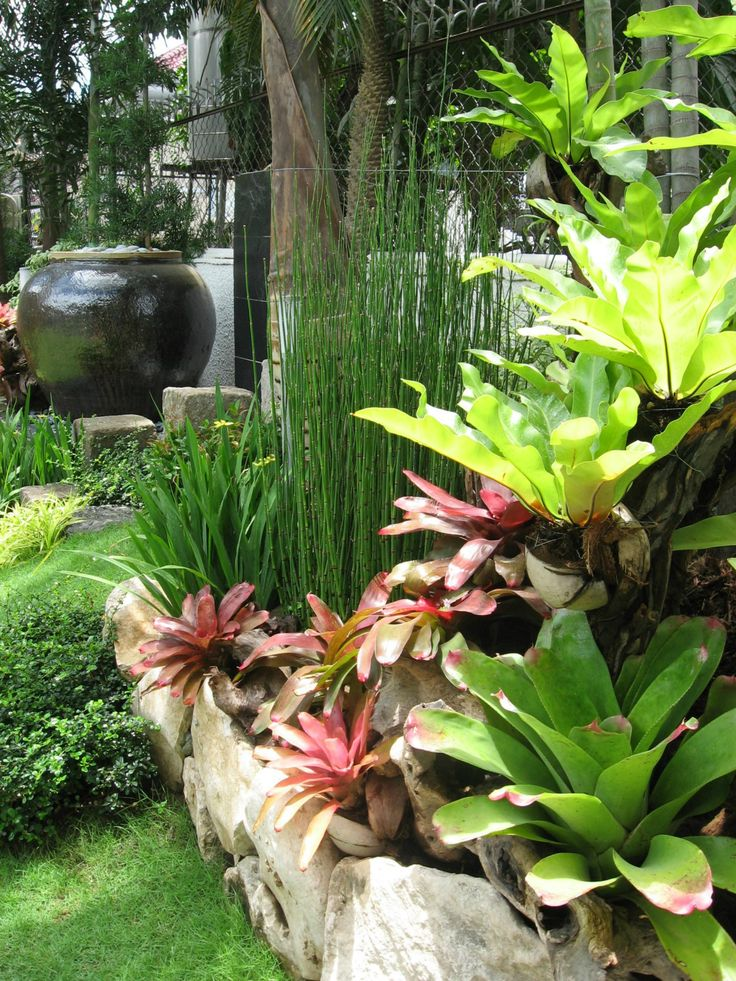 Landscaping ideas for small yards gardening pinterest for Pocket garden designs philippines