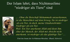Der Islam lehrt, dass Nichtmuslime niedriger als Tiere sind.