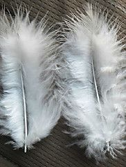 Chicken Feather Strip - Set of 100 Pieces – USD $ 8.09