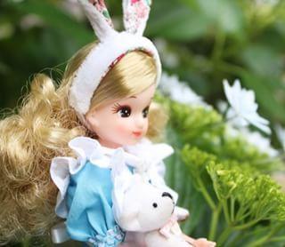 早速アリスの服を着せてお庭のアジサイと・・・💕水色アリスドレス完売しました~💕ありがとうございました~(*^▽^*)ピンクアリスは後一着〜☺️ご興味のある方はプロフィールよりminneにどうぞ💖これとはちょっとブレードとか裾のレースが違うんですよね💦仕様を変えるのはやめようと思いつつついちょこちょこ変えたくなっちゃう(;^_^A #licca #doll #dollclothes #handmade #リカちゃん #リカちゃんキャッスル #ハンドメイド #不思議の国のアリス