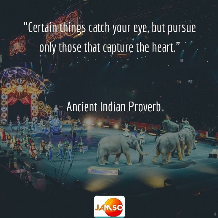 """Certain things catch your eye but pursue only those that capture the heart.""    Ancient Indian Proverb"