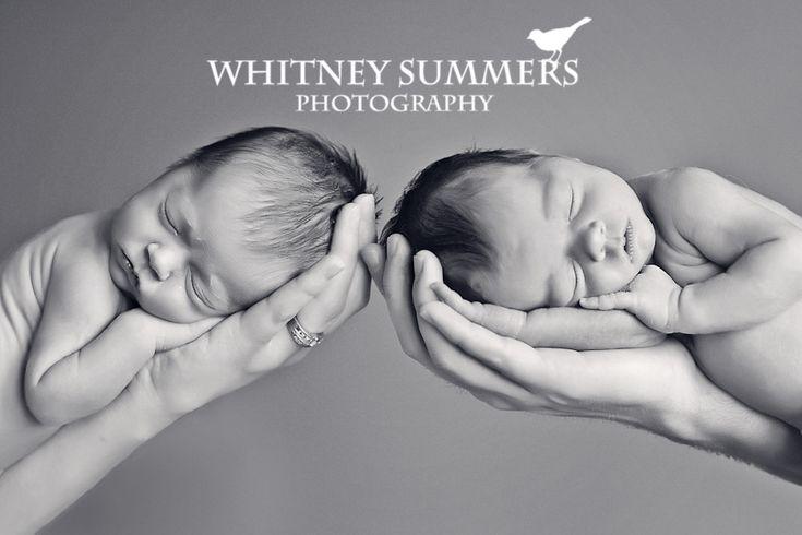 Image detail for -Baby Harper & Averee {Washington & Oregon newborn twins photography ...