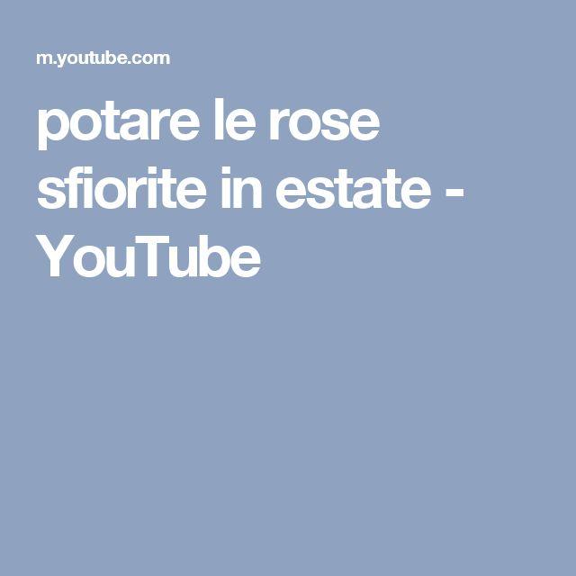 potare le rose sfiorite in estate - YouTube