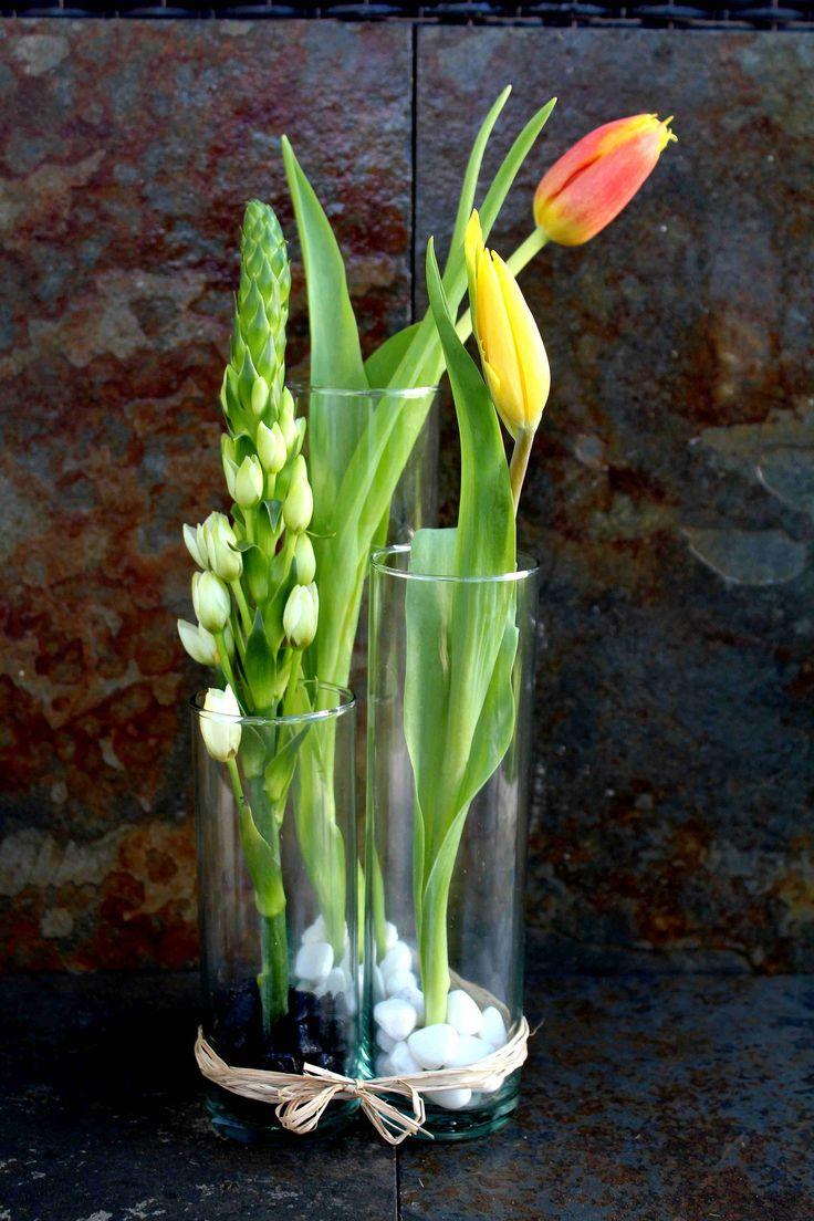 Mini arreglos florales: tulipanes y ornitogalum.