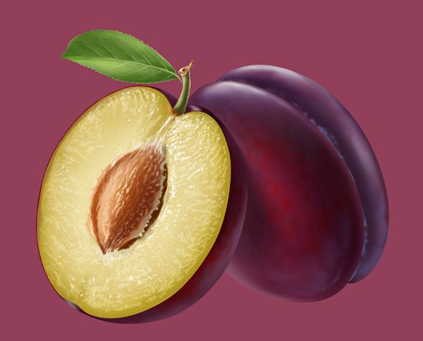 Fruits on Behance