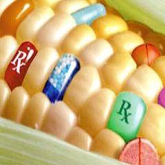 Austin Publishing Group: Austin Food Sciences