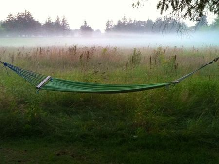 Hammock. Photo by Carl Christian Glosemeyer Andersen — National Geographic Your Shot