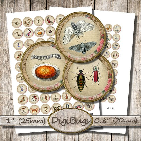Insects Butterflies Moths Beetles Caterpillars, Digital Collage Sheet, 20 mm, 25 mm Circles, Round Insect Jewelry, Printable Download, a7