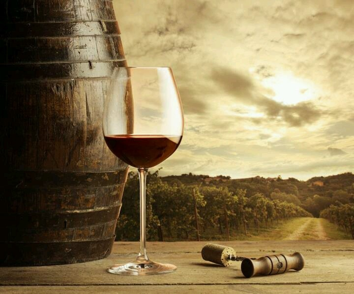 130 Best Images About Cultura Del Vino On Pinterest