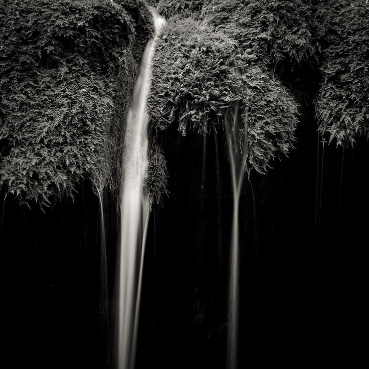 Dancers by Alexandru Crisan on Art Limited
