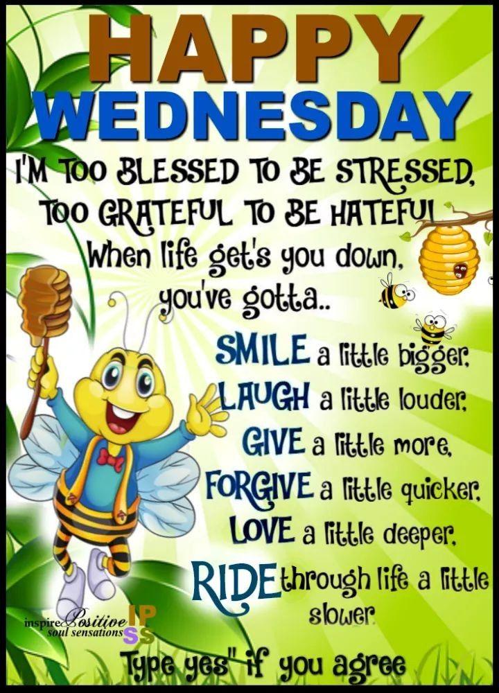 "Encouraging Sayings: Happy""HuMp"" Day!🤗🐪"