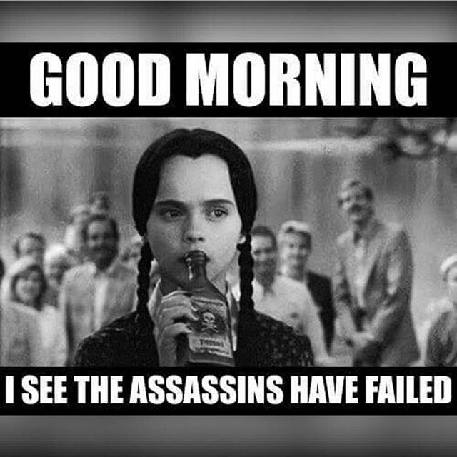 Wednesday Addams Meme Funny : Best images about funny things on pinterest
