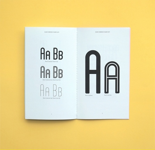 Brochure: Disseni Gràfic, Graphics Inspiration, Lost Types, Free Fonts, Graphics Design, Typeface Design, Blanche Fonts, Fonts Families, Typography