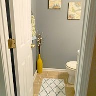basement bathroom - drywall and paint, replace toilet and put in sink, laminate flooring and updated lighting