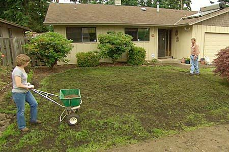 with This Old House landscape contractor Roger Cook   thisoldhouse.com   from How to Fix a Patchy, Weedy Lawn