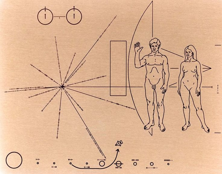 The illustration on the Pioneer plaque