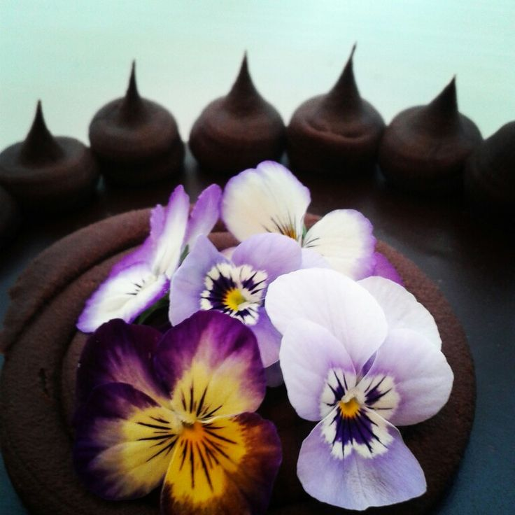 17 Best Images About Birthday Cakes Auckland On Pinterest