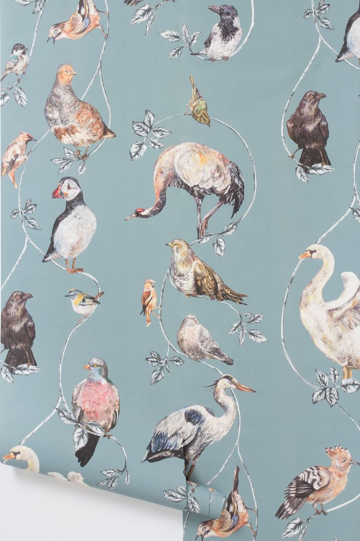 Flights Of Fancy Wallpaper - Anthropologie.com ... looks crazy, but for a half bath feature wall, could work.