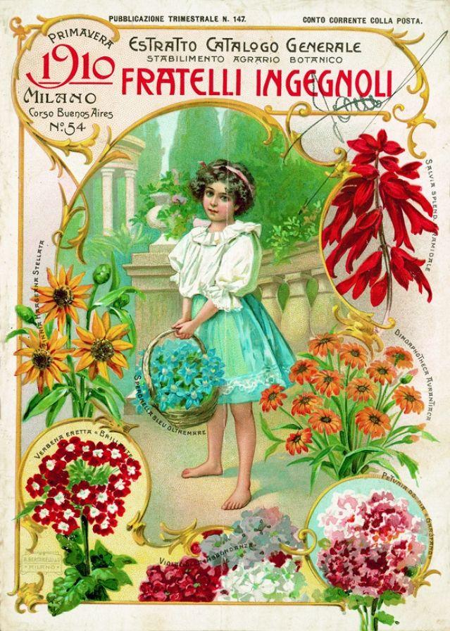 Oltre 1000 immagini su ingegnoli 1817 su pinterest - Fratelli ingegnoli piante ...