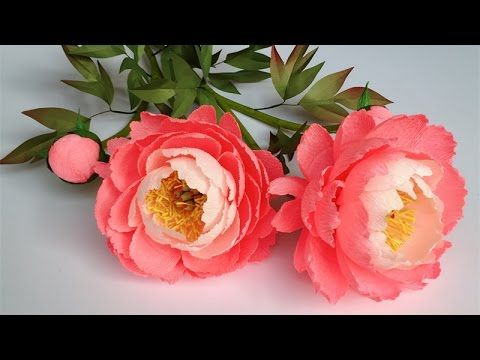 ABC TV | How To Make Coral Charm Peony Paper Flower From Crepe Paper - C...