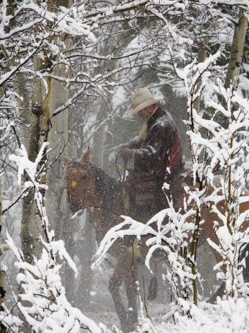 Cowboys riding in Autumn Aspens with a fresh snowfall