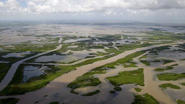 La. Flood Board Sues Oil Industry Over Wetlands