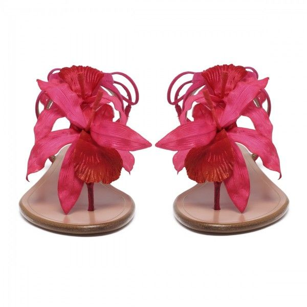 Fuchsia Flora Sandal Flats ❤ liked on Polyvore featuring shoes, flats, flat shoes, flat pump shoes, fuschia shoes, flat pumps and flat heel shoes