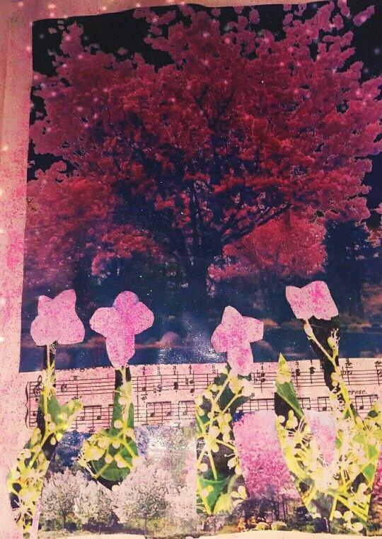 Japansk kirsebær træ