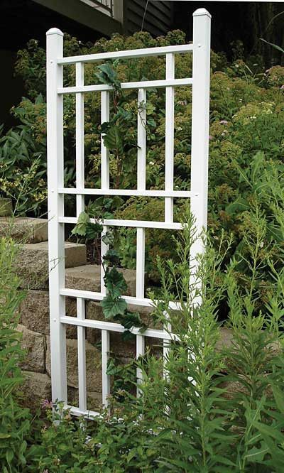 "Wellington Trellis, White, 74""H"