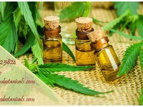 Beat cancer with Cannabis oil...Visit..https://www.legalcannabissupply.com..call/text:(720) 634-6937