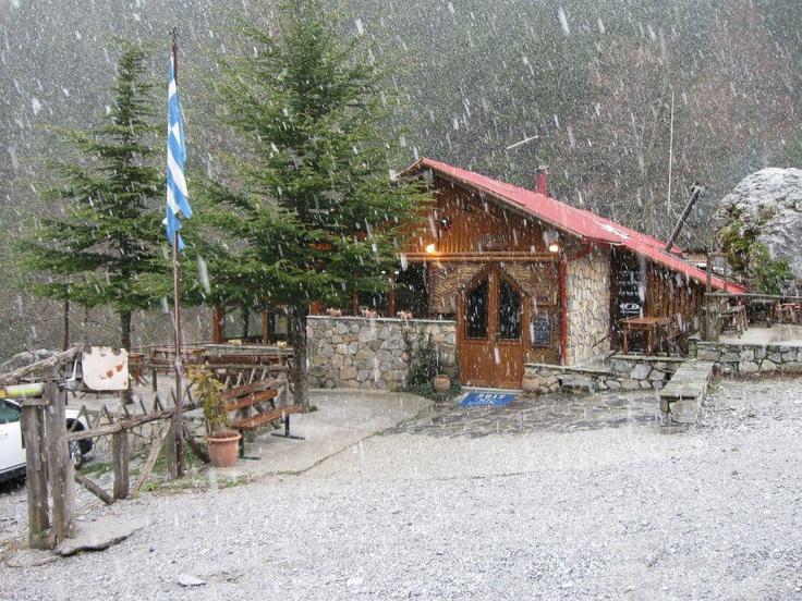 GREECE CHANNEL | Περιοχη Πριονια ..επανω στον Ολυμπο στη  - Prionia area, near #Olympus #mount, #Pieria, #Greece http://www.greece-channel.com/
