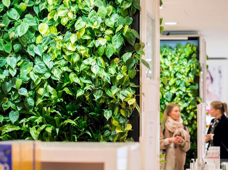 Naava smart green walls are the focal point of the department store.