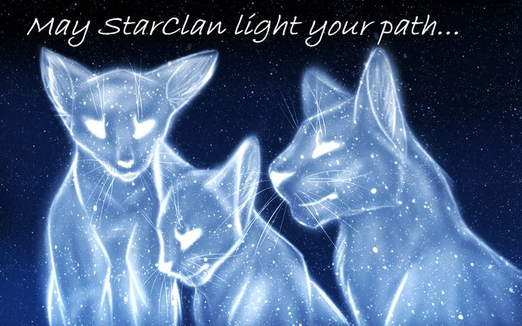 ⭐️Aww..Yes, may Starclan guide you all⭐️