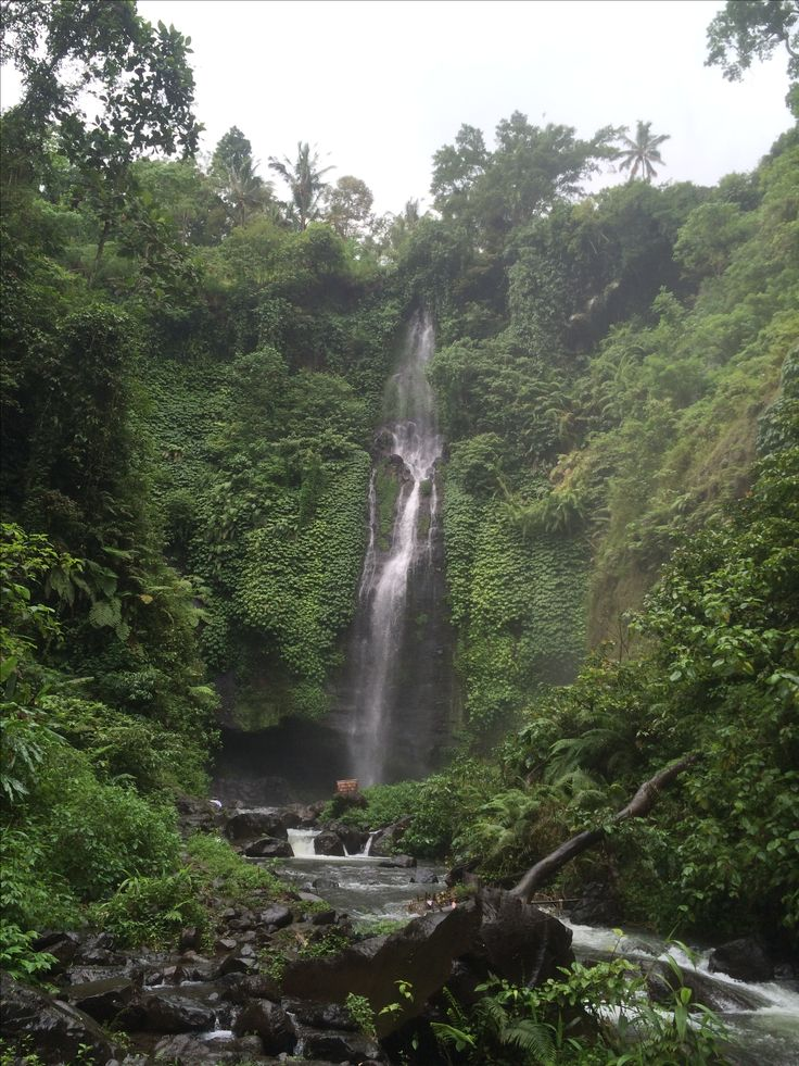 Sekumpul waterfall 2. there are 2 beautiful waterfalls in this location. the one in the picture requires you to walk through knee deep water to reach it.