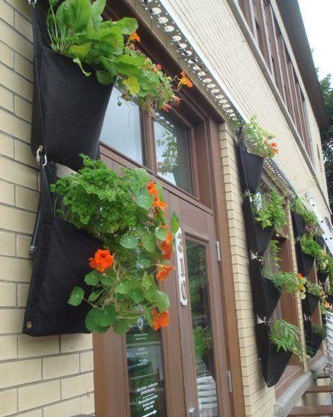 Smart Pots muraux pour agriculture verticale / Wall Pouches from Smart Pot