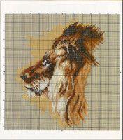 lion - # 2