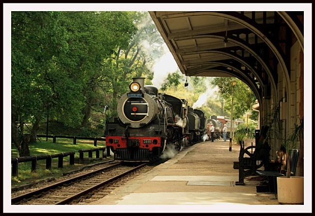 Inchanga Choo Choo train rides from Kloof.  Experience.