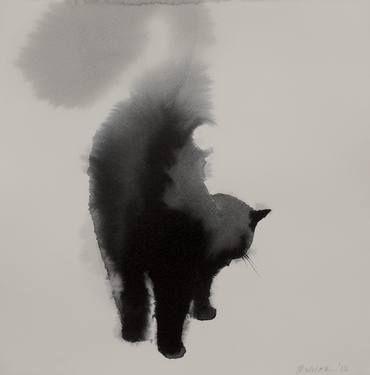 Cat 7.