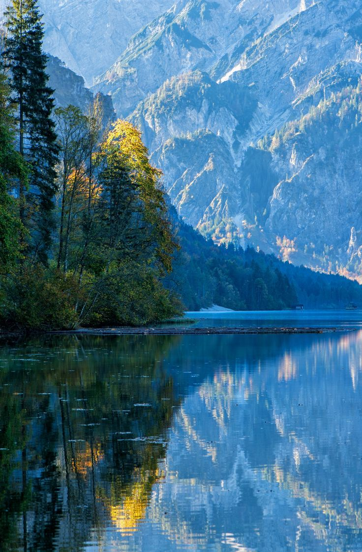 """AUSTRIA - ALMSEE --- """"Highlighted"""" - First light hits this tree along the Almsee."""