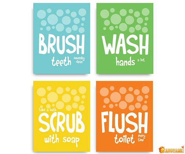 1000+ Ideas About Flush Toilet On Pinterest