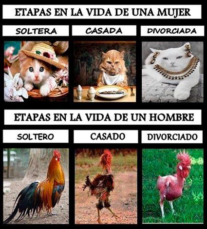 """El Mundo De Los Borrachos [Humor] by Nelson Pereira: Etapas De La Vida """" Con Humor """""""