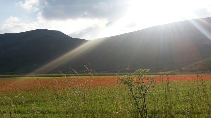 Piangrande sunset - Castelluccio of Norcia - Umbria