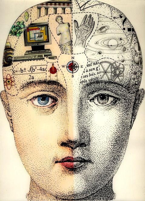A Phrenology Head to Love | Content in a Cottage