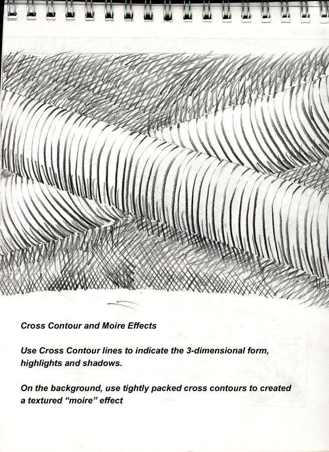 Contour Line Drawing Technique : Best cross contour images on pinterest