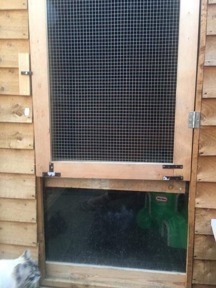 Pin By Ella Angela On Ferret Homes Sheds Ideas And Fun Home