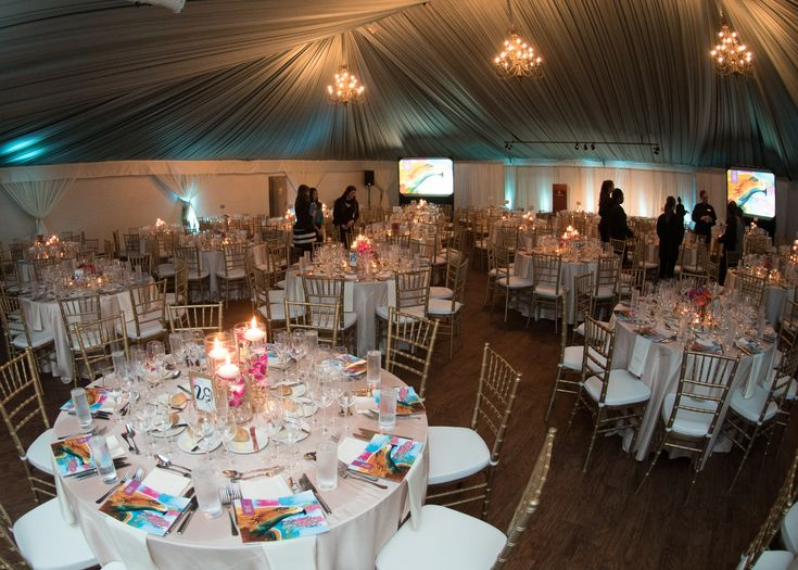 2017 Hospitality Gala | Benefiting the College of Human Sciences Hospitality Management Program at Auburn University #fundraiser #gala | Venue: The Hotel at Auburn University #Marquee #FabricStructure